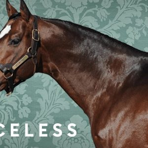 Why This Billionaire-Owned Thoroughbred Horse Farm Is Worth $400 Million | Forbes