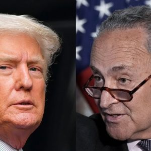 'The Big Lie Has Spread Like A Cancer': Schumer Swipes At Trump In Speech On Voting Rights